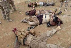 الجيش يقتل 46 مسلح  فى مصنع للمتفجرات فى سيناء