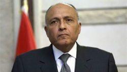 شكرى : مصر دولة مؤسسات راسخة منذ 7 آلاف سنة