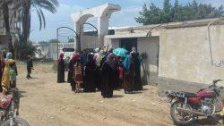 قافلة جامعة الزقازيق الطبية بقرية الحلمية التابعة لمركز ابو حماد شرقية