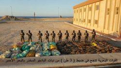 """القوات البحرية تنجح فى ضبط """" 3 طن """" من نبات البانجو المخدر بالبحر الأحمر"""