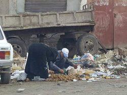 شركات النظافه تغرق الدولة فى القمامه ولا رقيب ولا حسيب وكله بالقانون.