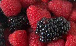 التوت يحسن صحة الأمعاء والقلب والدماغ