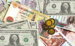 """"""" مدحت نافع """"  قيمة الجنيه المصري ليست المعوق الرئيسي لـ التصدير"""