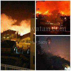 حريق هائل يضرب فلسطين المحتلة والسلطات الإسرائيلية تطلب العون الخارجي من الدول المجاورة