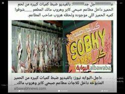 """وزارة الصحة ومراقبين التغذية بمنطقة روض الفرج ينفون شائعات العثور على لحم الحمير داخل مطاعم""""صبحى كابر"""""""