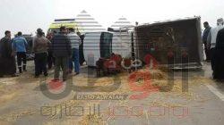 حادث تصادم أسفر عن اصابة 5 اشخاص بطريق المحله-كفر الشيخ