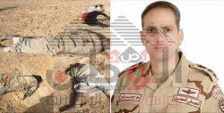 القوات الجوية تستهدف تجميع الارهابين وتقتل 19 إرهابى