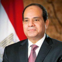 حزب حماة الوطن يشيد  بالقرارات الاقتصادية التى أعلنها الرئيس عبد الفتاح السيسى
