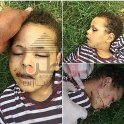 العثور على جثة طفل عليها أثار تعذيب بجانب شجرة فى مصر القديمة