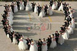 20 سبتمبر…حفل زفاف 50 عريس و عروسة بالإسكندرية