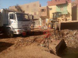 بالصور…حملات نظافة وتجميل بشوارع بنى سويف