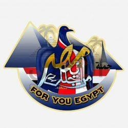 حملة من أجلك يا مصر تؤيد الرئيس السيسى