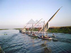 حملة موسعة لشرطة مسطحات المطرية لضبط الصيد بالكهرباء