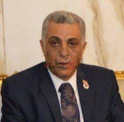 الرئيس السيسي هو فارس الفرسان قلب وعقل المصريين