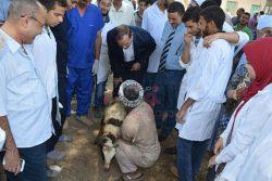 قوافل جامعة سوهاج البيطرية تعالج 1298 حيوان بأولاد شلول و مناع