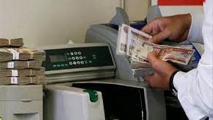 التنظيم والإدارة صرف رواتب شهر فبراير وفقًا لقانون الخدمة المدنية